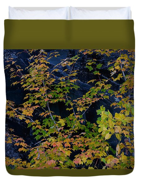 Duvet Cover featuring the photograph Stone Tree by Kevin Blackburn