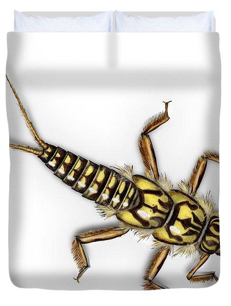 Stonefly Larva Nymph Plecoptera Perla Marginata - Steinflue -  Duvet Cover