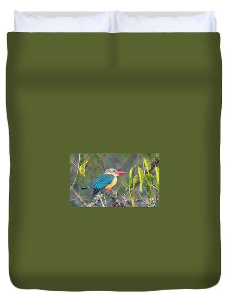 Stork-billed Kingfisher Duvet Cover by Pravine Chester