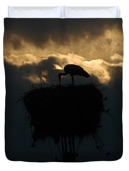 Stork With Evening Sun Light  Duvet Cover
