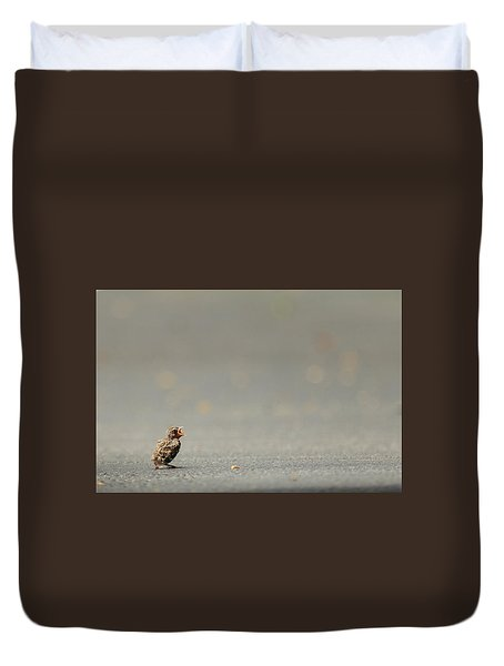 Story Of The Baby Chipping Sparrow 3 Of 10 Duvet Cover