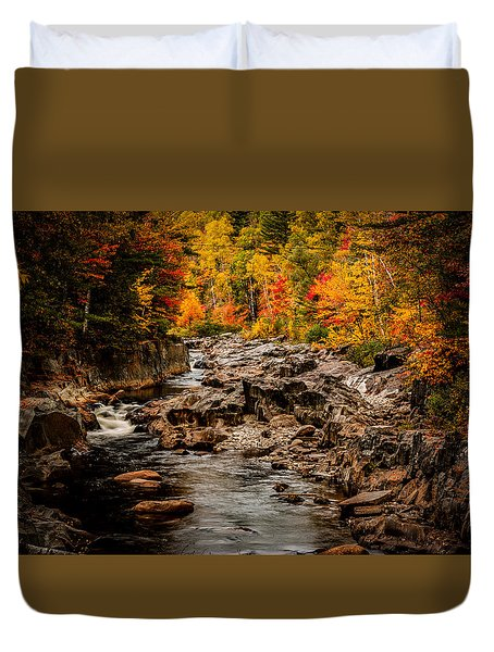 Stream Meanders The Fall Foliage Duvet Cover