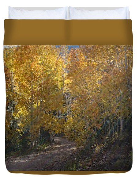 Duvet Cover featuring the photograph Streaming Light Paiute Trail Fremont Utah by Deborah Moen