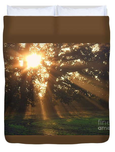 Streaming Sun Duvet Cover by Erica Hanel