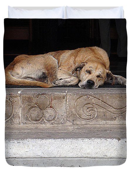 Duvet Cover featuring the photograph Street Dog Sleeping On Steps by Karen Zuk Rosenblatt