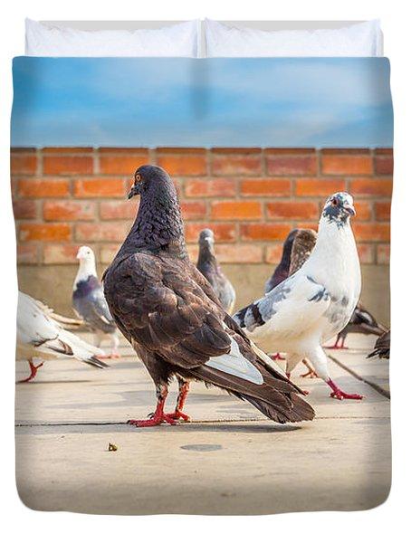 Street Pigeons. Duvet Cover