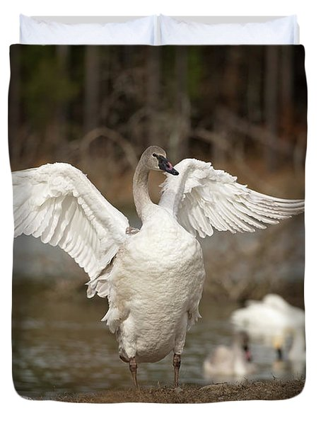 Stretch Your Wings Duvet Cover