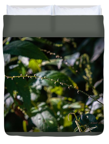 String Of Light Duvet Cover by Edward Peterson