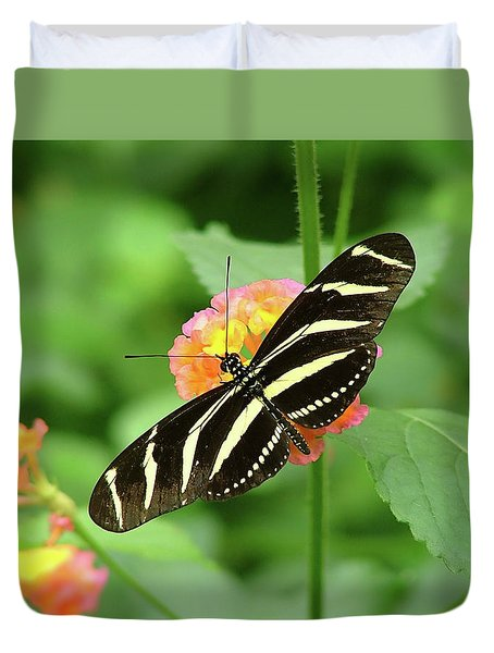 Duvet Cover featuring the photograph Striped Butterfly by Wendy McKennon