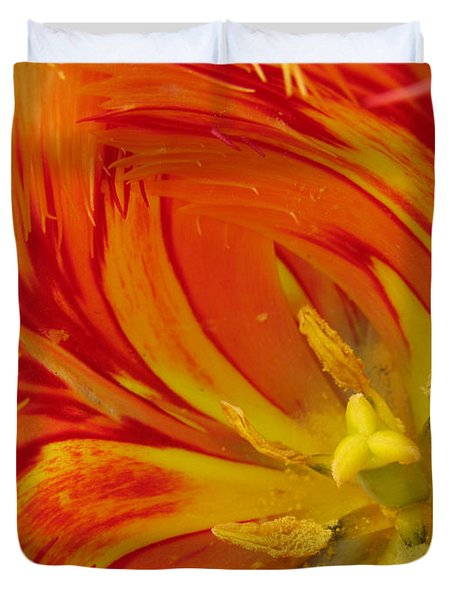 Duvet Cover featuring the photograph Striped Parrot Tulips. Olympic Flame by Ausra Huntington nee Paulauskaite