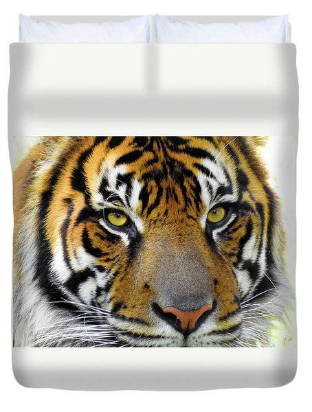 Stripes, No. 26 Duvet Cover