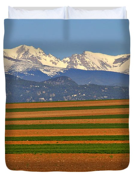 Stripped Fields And Balloon Duvet Cover by Scott Mahon