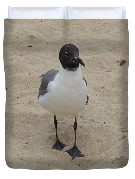 Duvet Cover featuring the photograph Struttin' Seagull  by Charles Kraus
