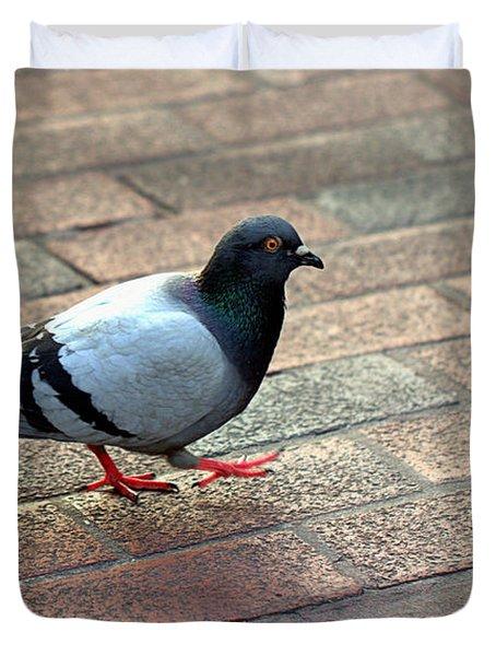 Strutting Pigeon Duvet Cover