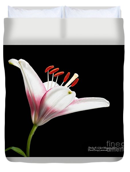 Study Of A Lily In Magenta, White, And Red #2 By Flower Photographer David Perry Lawrence Duvet Cover