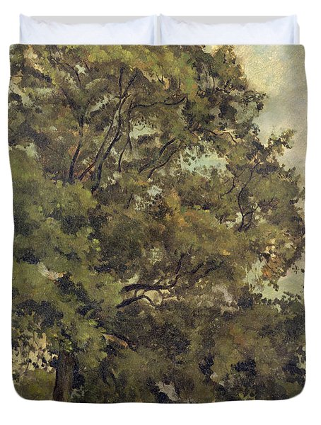 Study Of An Ash Tree Duvet Cover by Lionel Constable