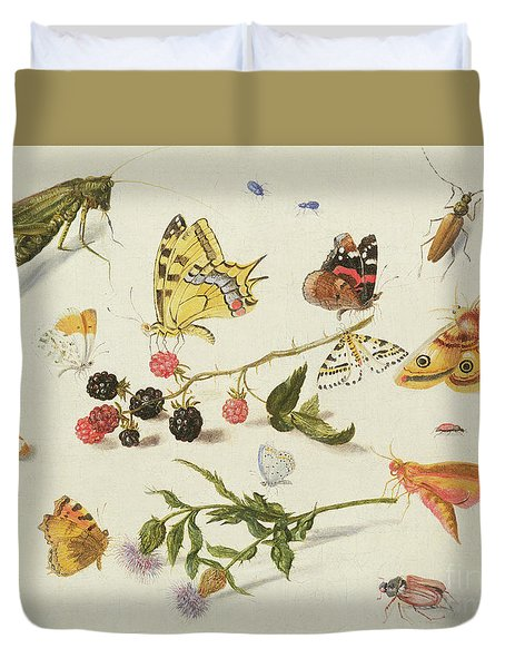 Study Of Insects, Flowers And Fruits, 17th Century Duvet Cover