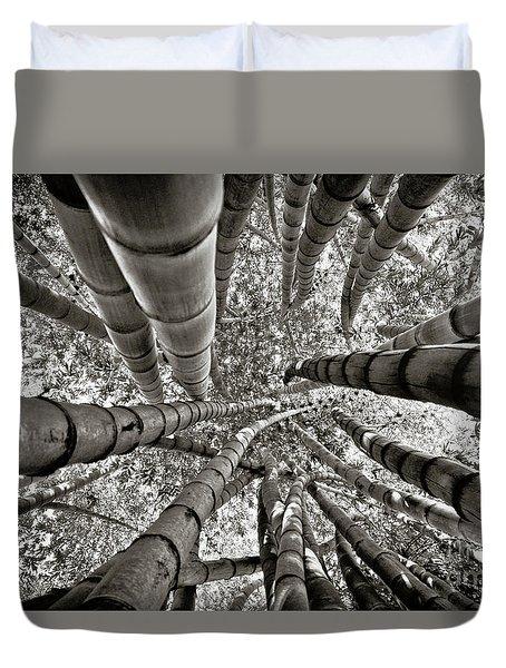 Stunning Bamboo Forest Duvet Cover