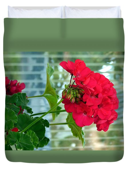 Stunning Red Geranium Duvet Cover by Will Borden
