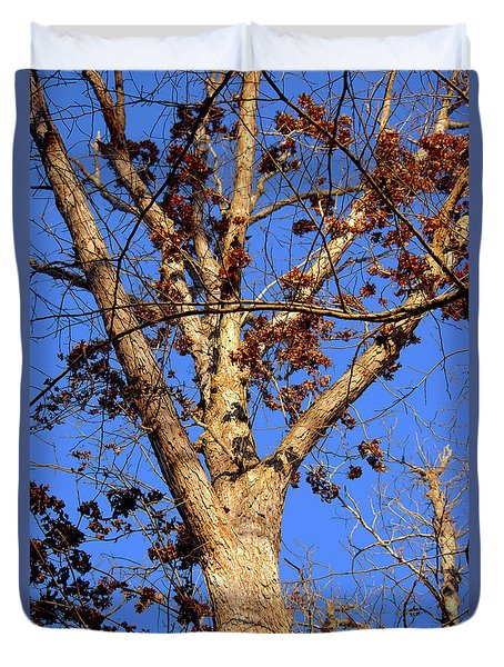 Stunning Tree Duvet Cover