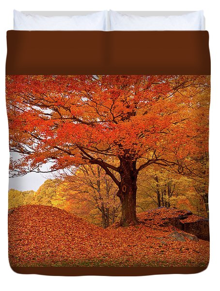 Sturdy Maple In Autumn Orange Duvet Cover