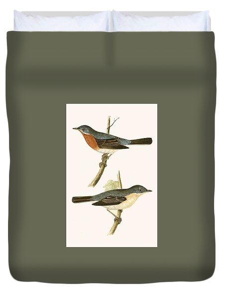 Sub Alpine Warbler Duvet Cover by English School