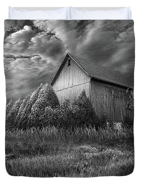 Sublimity Duvet Cover by Phil Koch