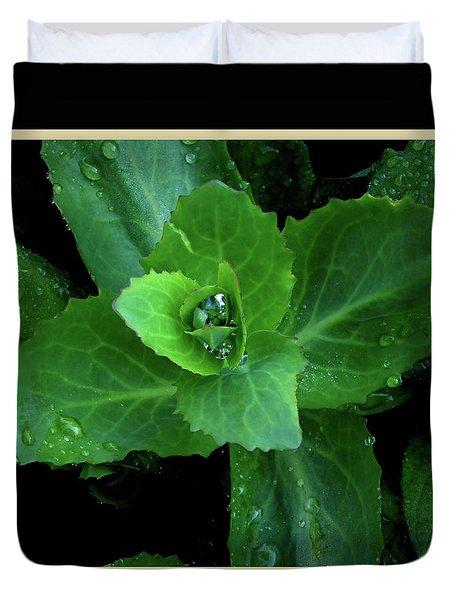 Succulent After The Rain  Duvet Cover