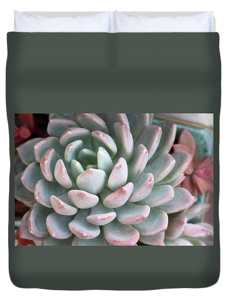Duvet Cover featuring the photograph Succulent Beauty by Catherine Lau