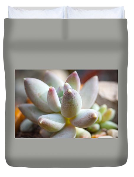Duvet Cover featuring the photograph Succulent Cute  by Catherine Lau