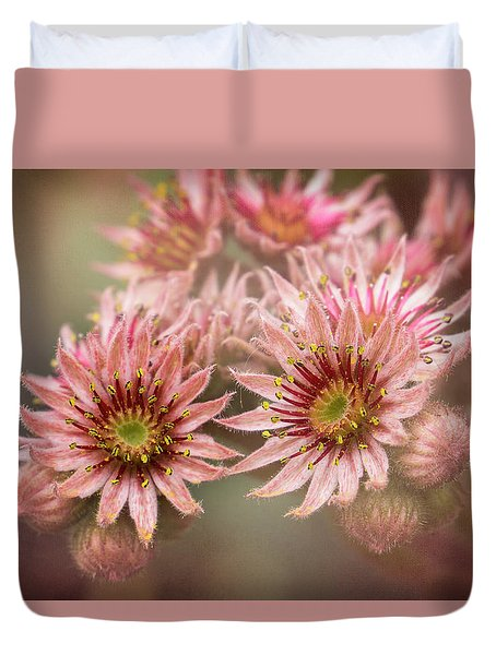 Succulent Flowers - 365-100 Duvet Cover