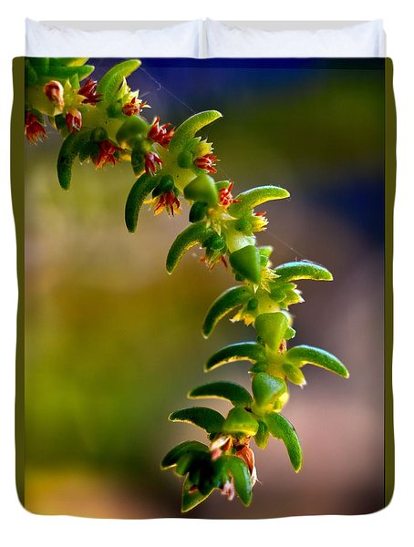 Succulent Hanging Duvet Cover