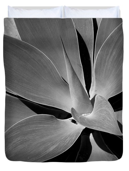 Succulent In Black And White Duvet Cover by Karen Nicholson