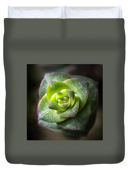 Duvet Cover featuring the photograph Succulent Plant by Catherine Lau
