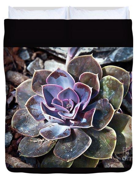 Succulent Plant Poetry Duvet Cover
