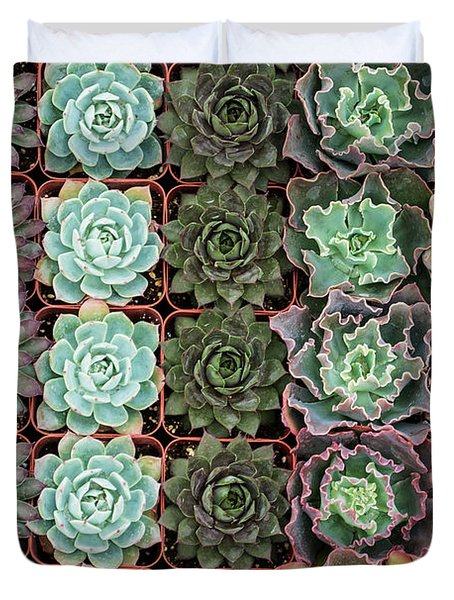 Succulent Tray Duvet Cover