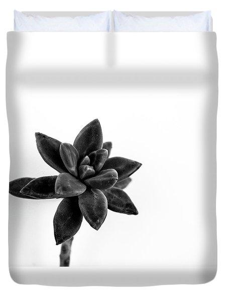 Succulents Flowers Duvet Cover