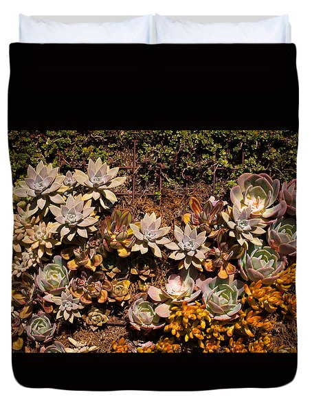 Duvet Cover featuring the photograph Succulents Vertical Garden by Catherine Lau