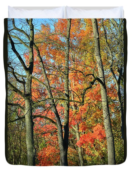 Duvet Cover featuring the photograph Sugar Maple Brilliance by Ray Mathis