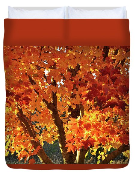 Duvet Cover featuring the photograph Sugar Maple Sunset by Ray Mathis