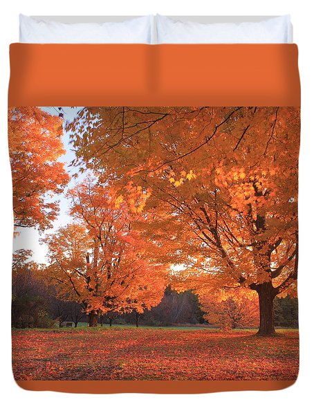 Sugar Maples In Morning Light Duvet Cover