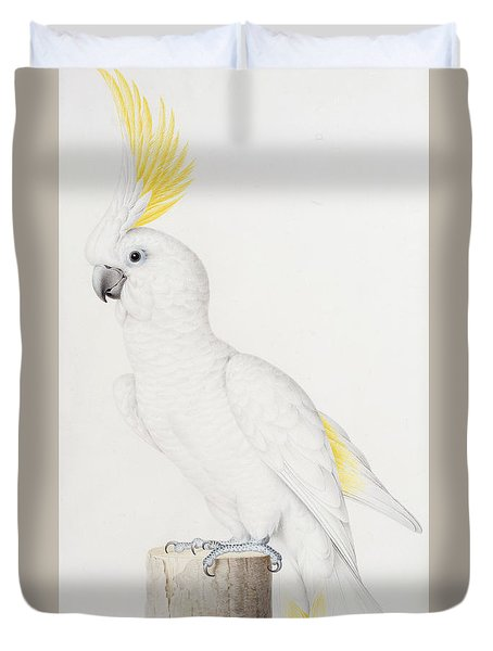 Sulphur Crested Cockatoo Duvet Cover by Nicolas Robert