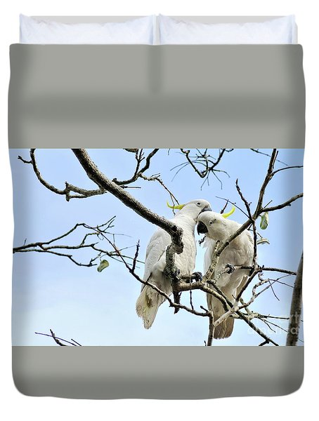 Sulphur Crested Cockatoos Duvet Cover by Kaye Menner