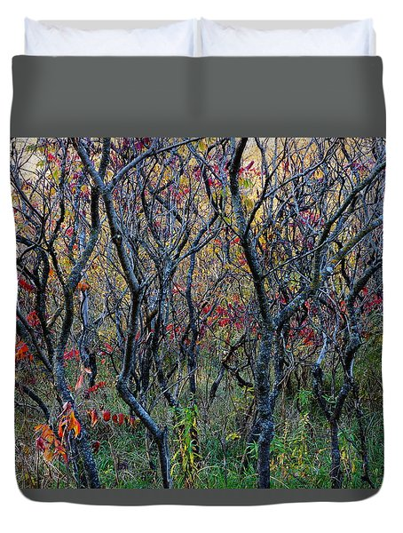 Sumac Grove Duvet Cover by Steven Clipperton
