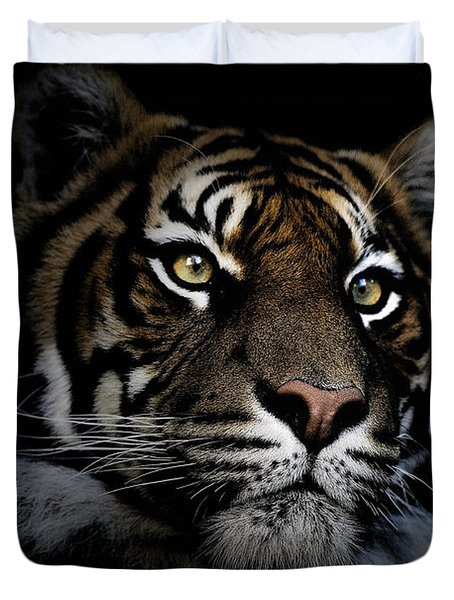 Sumatran Tiger Duvet Cover by Avalon Fine Art Photography