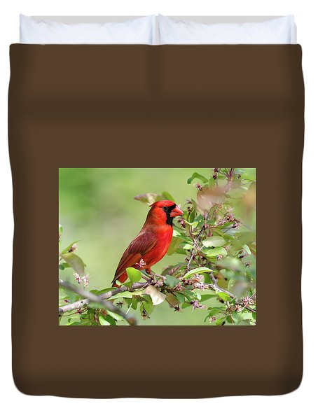 Summer Cardinal Duvet Cover
