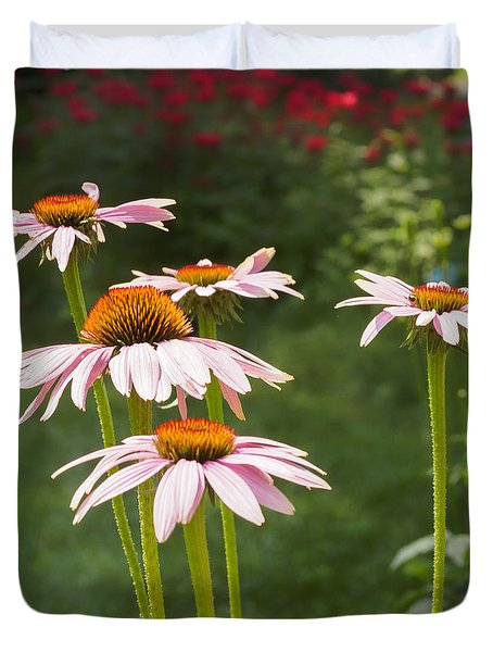 Duvet Cover featuring the photograph Summer Echinacea I by Marianne Campolongo