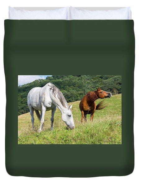 Summer Evening For Horses Duvet Cover