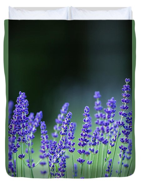 Summer Lavender Duvet Cover