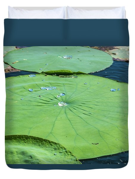 Summer Lily Pad II Duvet Cover by Pamela Williams